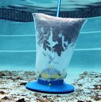 pool_bag